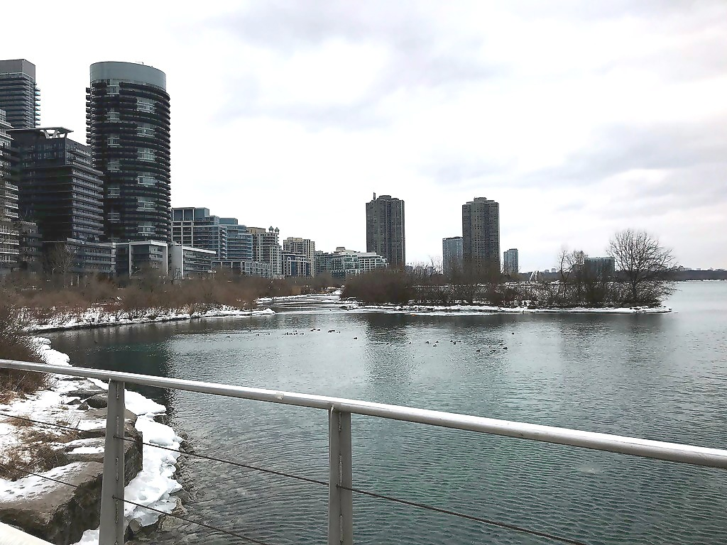 5 Reasons People Are Moving to South Etobicoke