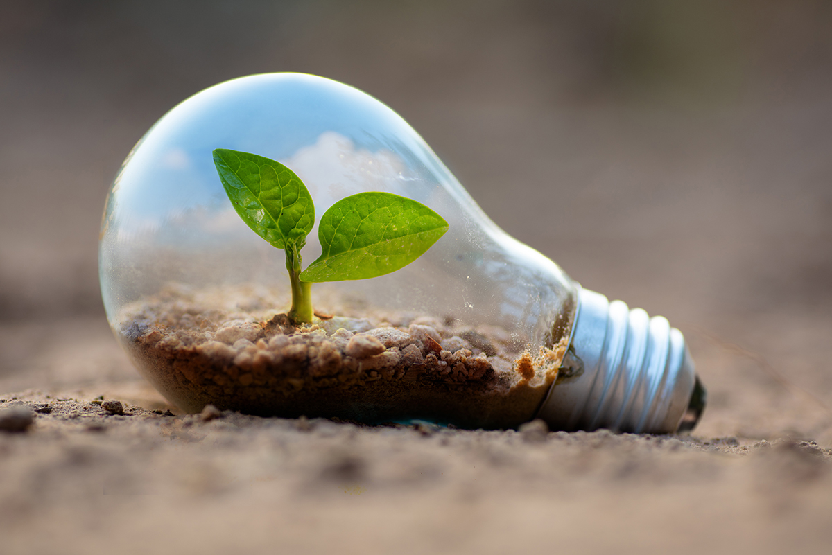 Save Money on Home Energy: How to Add Value to Your Home By Going Green